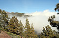 Clouds on the way to Pico del Teide from Vilaflor (399921084).jpg