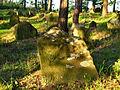 Cmentarz mahometański Studzianka 09 JoannaPyka.JPG