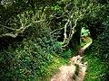 Coast path Dinas Island, approaching Cwm-yr-Eglwys - geograph.org.uk - 534067.jpg