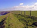 Coast path near Foel Goch, eastward - geograph.org.uk - 728340.jpg