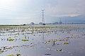 Colombia Floods7 (5670753248).jpg