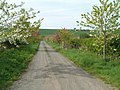 Colourful Farm Road - geograph.org.uk - 169887.jpg