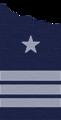 Comandante de Grupo (FACH).png