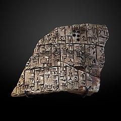 Cone Fragment-AO 4598 a-AO 4598 b