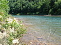 Conemaugh RiverTurquoise water.jpg
