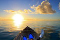 Cook Islands IMG 5719 3 (8451964867).jpg