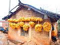 Cornproduction in Yunnan.JPG
