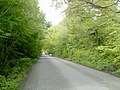 Country Road, Co Meath - geograph.org.uk - 1856823.jpg