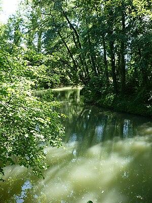 Venoge (river) - The course of the river, near Saint-Sulpice