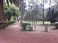 Coyoacán plants nursery.jpg