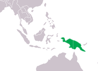Crocodylus novaeguineae Distribution.png