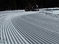 Cross Country Ski Trail Corduroy.jpg