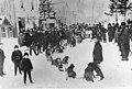 Crowd surrounding dog sled team, Skagway, Alaska (J6210).jpg