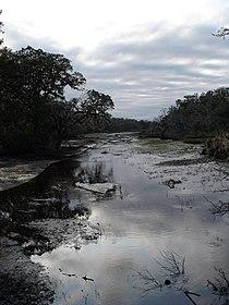 Cumberland-island-marsh.jpg