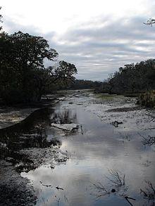 Cumberland Island Wikipedia