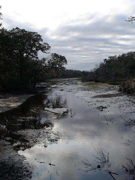 File:Cumberland-island-marsh.jpg