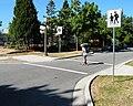 Curb extensions at school crossing.jpg
