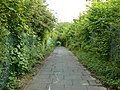 Cycleway behind Daneshill Industrial Estate - geograph.org.uk - 843987.jpg