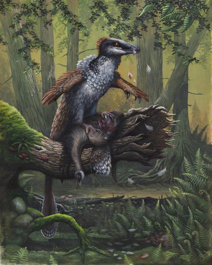 Dakotaraptor RPR