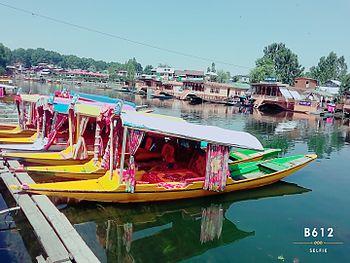 Dal Lake-Srinagar-Morning.jpg