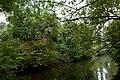 De ringgracht rond het verdwenen Hof ter Elst in Tildonk , Haacht - 368717 - onroerenderfgoed.jpg