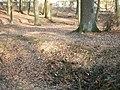Deutergraben Flutgraben nördlich Waldteiche.jpg