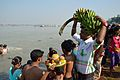 Devotee with Banana Bunch - Chhath Puja Ceremony - Baja Kadamtala Ghat - Kolkata 2013-11-09 4311.JPG