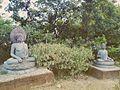 Dhaulagiri22.jpg