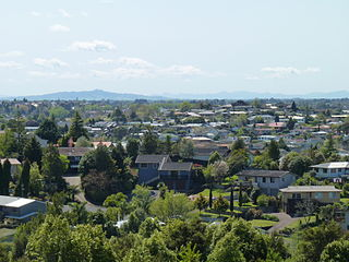 Dinsdale, New Zealand Suburb in New Zealand