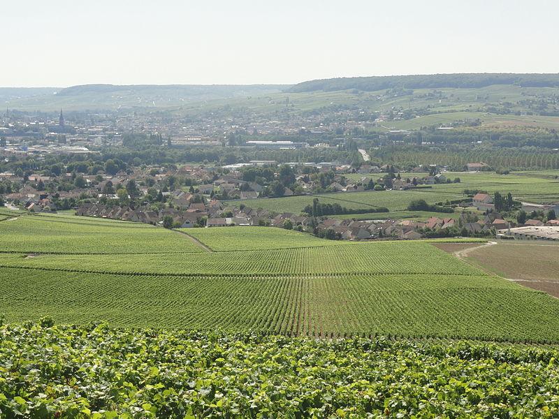 Vue de de Dizy (Marne) depuis le vignoble qui surplombe le village avec au fond la ville d'Épernay.