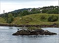 Dog figure on a small island - Alverstraumen, Norway - panoramio.jpg