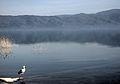 Dojran Lake 256.jpg