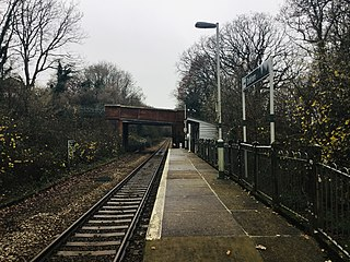Doleham railway station Railway station in East Sussex, England