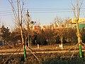 Dongying, Shandong, China - panoramio (301).jpg