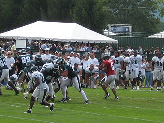 Donovan McNabb - McNabb drops back to pass during Eagles' training camp in Bethlehem, Pennsylvania in August 2008