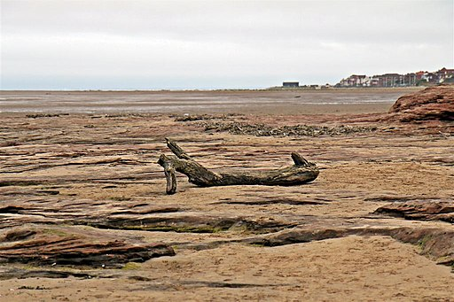 Driftwood, Hilbre Point, Hoylake (geograph 3146712)