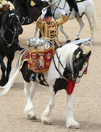 American Drum Horse - A drum-horse of the Household Cavalry leading the mounted band at the Trooping of the Colour in 2007
