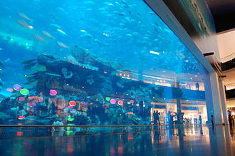 Public aquarium - The main aquarium at Dubai Mall Aquarium