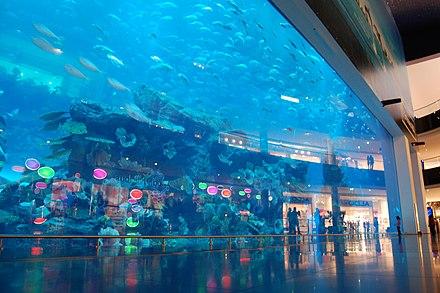public aquarium the main tank at the dubai mall aquarium
