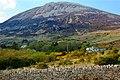Dunlewy - Homes at base of Mount Errigal - geograph.org.uk - 1189898.jpg
