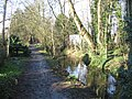 Easter mud - Hobsons Brook - geograph.org.uk - 743790.jpg
