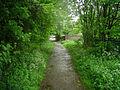 Edenthorpe - Bridleway.jpg