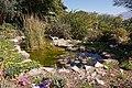 Eilat Botanical garden - pool.jpg
