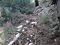Ekali, Greece - panoramio.jpg