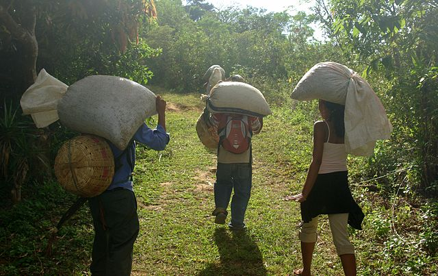 Fair Trade Coffee growers in Tacuba in the Parque Nacional El Imposible, El Salvador