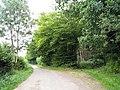 Ellenwhorne Lane, near Staplecross, East Sussex - geograph.org.uk - 939423.jpg