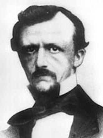 Sawfly - Carl Gerstäcker established the suborder Symphyta