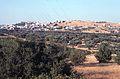 Entre Athènes et Spata - 8 (juillet 1999).jpg