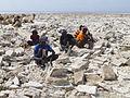Ethiopie-Exploitation du sel au lac Karoum (25).jpg