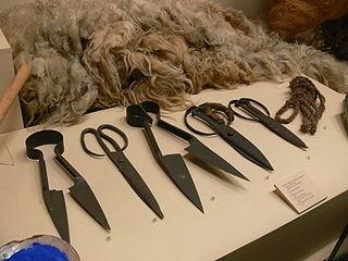 Euskal Museoa shearing.jpg